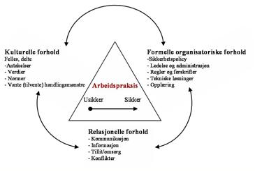 Sammenhengen mellom kulturelle, relasjonelle og organisatoriske forhold og betydningen for arbeidspraksis.